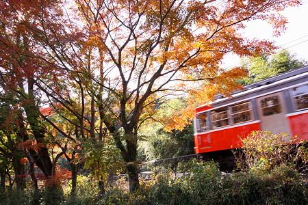 箱根登山電車(4)