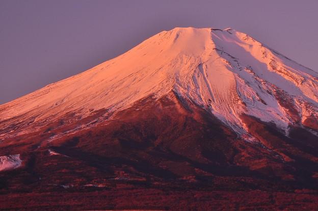 頂上も真っ赤に。。赤らめて