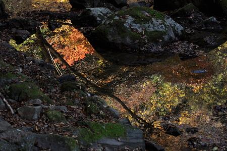 赤目四十八滝の紅葉・3