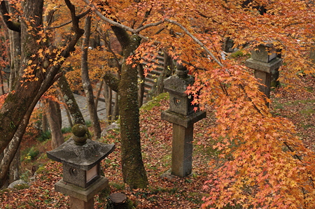 談山神社の紅葉-8