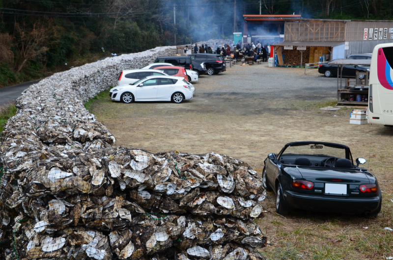 牡蠣の貝殻で積み上げられた石垣ならぬ貝垣